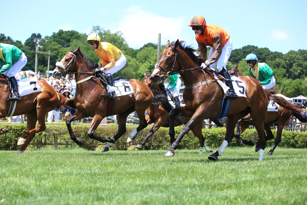 The Iroquois Steeplechase, Franklin, TN events and things to do this weekend in Franklin, Brentwood and Nashville, Tennessee.
