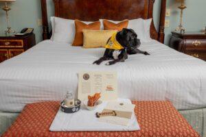 Dog-Friendly Hotels Franklin, Nashville Tenn