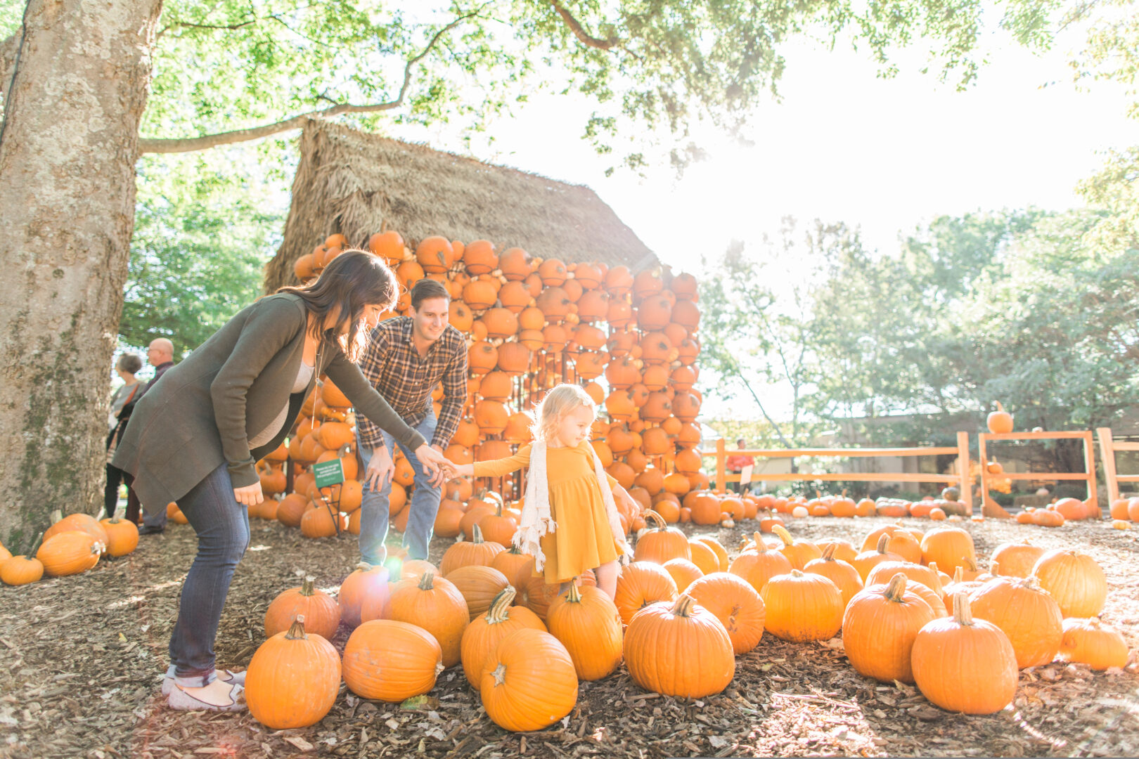 Family having fun at Cheekwood Harvest Annual Fall Festival in Nashville, TN.