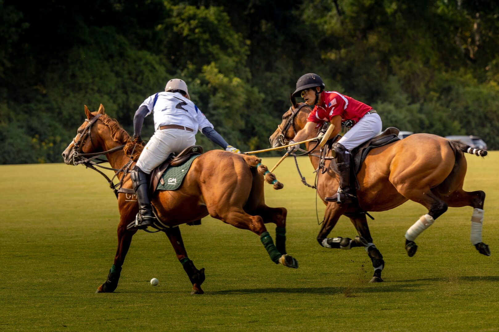 Chukkers for Charity Event Franklin Polo Action