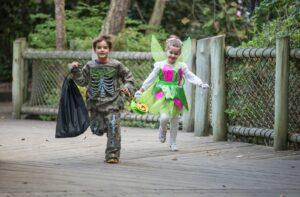 Halloween at the Nashville Zoo