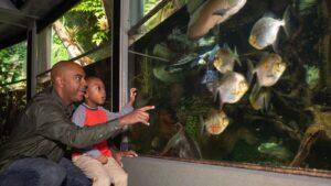 Family at the Nashville Zoo aquarium, fun family activities in Nashville at the Zoo.