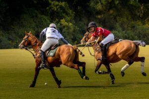 Polo field action at Chukkers for Charity Franklin Event.