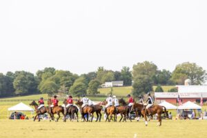 Polo match - Chukkers for Charity Franklin Event.